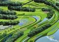 山体景观,景观树,草坪,水体景观