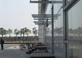 台阶,地面铺装,玻璃廊架,景观树