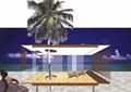 休闲亭,景观树,沙滩景观