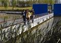 栏杆扶手,栈道桥,观赏草,挡墙,围墙