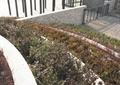 栏杆围栏,围墙,景墙,树池平台