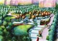 公共绿化,绿地景观,乔木