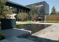 雕塑喷泉,喷泉水景,景观水池,文化墙,乔木