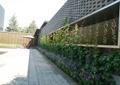 景墙,文化墙,植物墙,围墙
