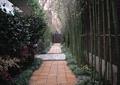 園路,地面鋪裝,竹子,庭院景觀,住宅景觀