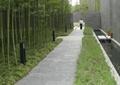 园路,地面铺装,花卉植物,竹子,灯柱,住宅景观