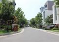 道路景观,垃圾桶,垃圾箱,别墅,行道树