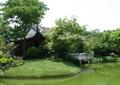 水池景观,草坪,景观树,亭子,石栏杆