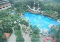 泳池,凉亭,亭子,泳池景观