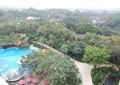 泳池,凉亭,乔木,泳池景观