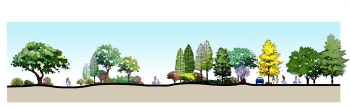 某森林公园景观手绘剖面图psd格式[原创]