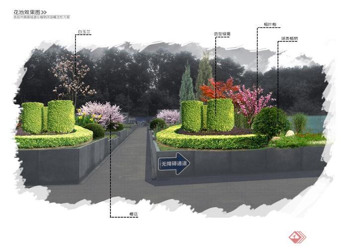 园林景观植物设计图-灌木丛灌木球花卉植物花台矮墙