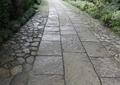 园路,地面铺装,景观树,观赏草,村庄景观
