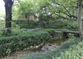 河流景观,石坪桥,灌木丛,景观树,村庄景观