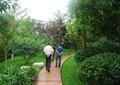 園路,地面鋪裝,景石,灌木球,景觀樹,住宅景觀