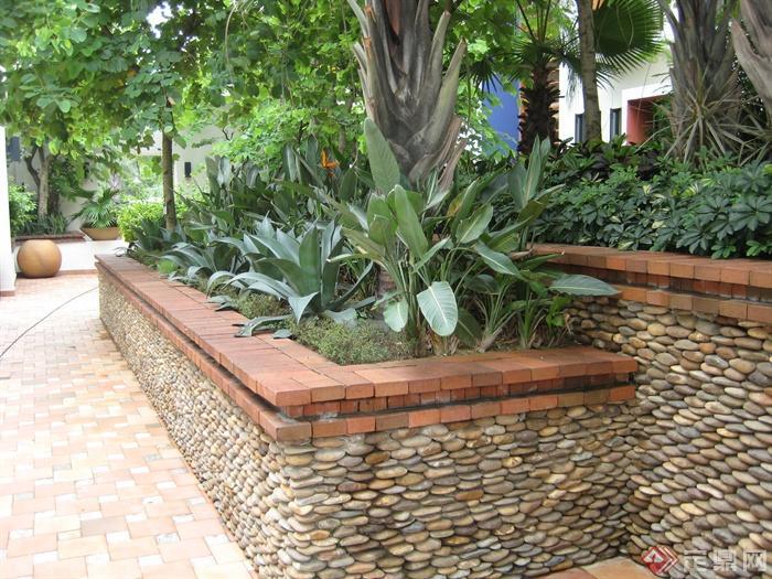 房间景观设计住宅图-美人蕉鸭脚木棕榈屋顶花cad图纸卵石坡度实景图片