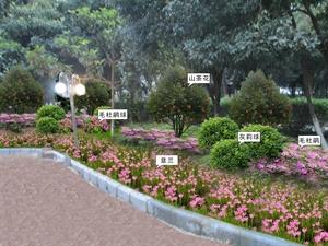 柳州市委机关大院庭院绿化