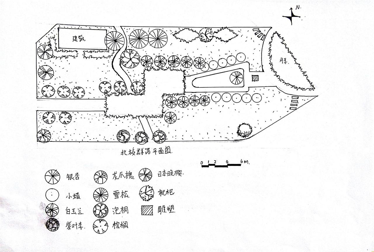 校园植物群落平面图