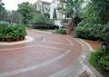 地面鋪裝,磚塊鋪裝,地面拼花,樹池,花缽,盆栽植物,路燈