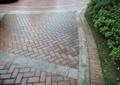 砖块铺装,地面铺装,树池