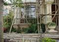 花钵,景观植物,竹子