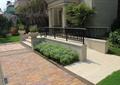 通道,地面铺装,铁艺栏杆,种植池,花卉植物,草坪,住宅景观