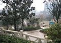 石欄桿,灌木叢,景觀樹,住宅景觀