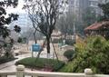 種植池,景觀樹,灌木叢,石欄桿,住宅景觀