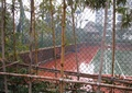铁艺围栏,景观植物,运动场,住宅景观