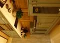 橱柜,灶台,盆景植物,食物,餐具,厨房