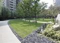 园路,卵石水沟,草坪,景观树,景石,水池景观,住宅景观