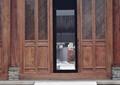 门窗,窗花,门,窗