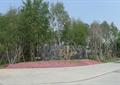 入口景观,入口牌坊,花卉植物,地面?#22871;?道路景观,道路绿化