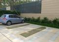 停車場,地面鋪裝,灌木叢,汽車,住宅景觀