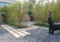 犀牛雕塑,园路,地面铺装,碎石地面