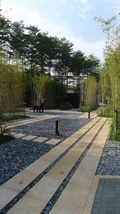 园路,地面铺装,庭院灯,碎石铺地,竹林,公园景观