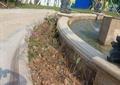 挡墙种植池,水池,喷泉水池,水池水景,地面铺装
