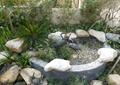 雕塑小品,景石,自然石,丹顶鹤雕塑