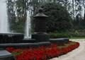 种植池,花卉植物去,灯箱,喷泉水景,住宅景观