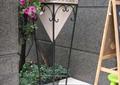 花架,花盆,花卉植物,地面铺装,住宅景观