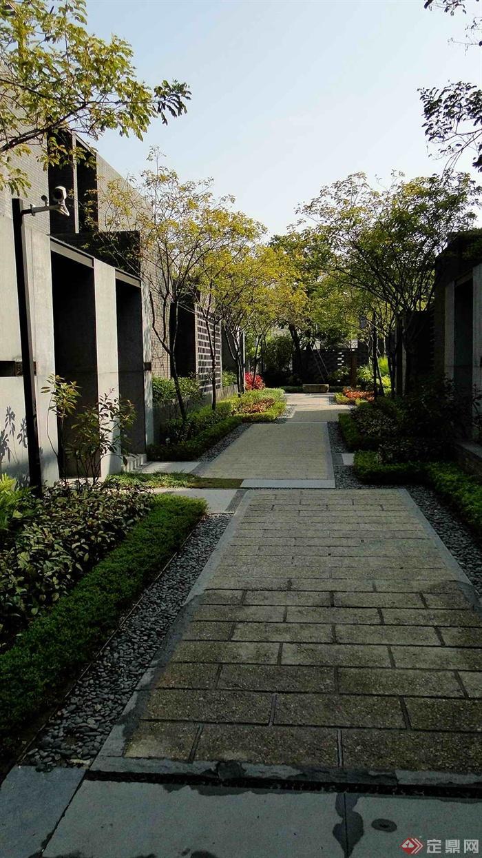 住宅区卵石污泥图-地面铺装树池摄像头实景路景观储泥池图纸图片