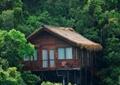 林间木屋,度假村酒店
