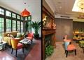 酒店空调,沙发茶几,吊灯,盆栽植物