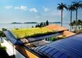 别墅庭院景观,屋顶绿化,草坪