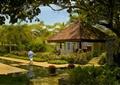庭院花园,水池,花园景观