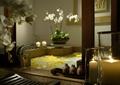 浴室,浴缸,盆栽花卉植物,摆件