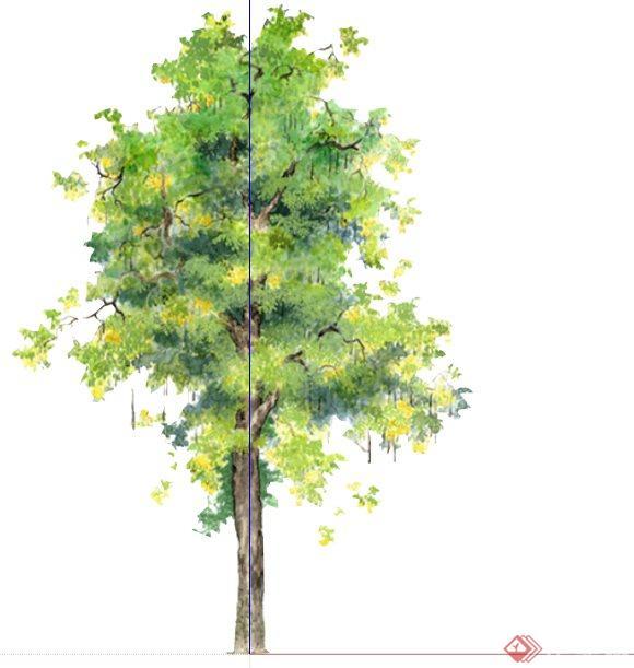 国外平面手绘树配景组件库su模型[原创]