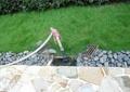 草坪噴灌系統,草坪,卵石路牙