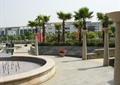 住宅小广场景观,圆形喷泉水池,景观柱,花钵