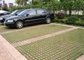 停车位,嵌草砖
